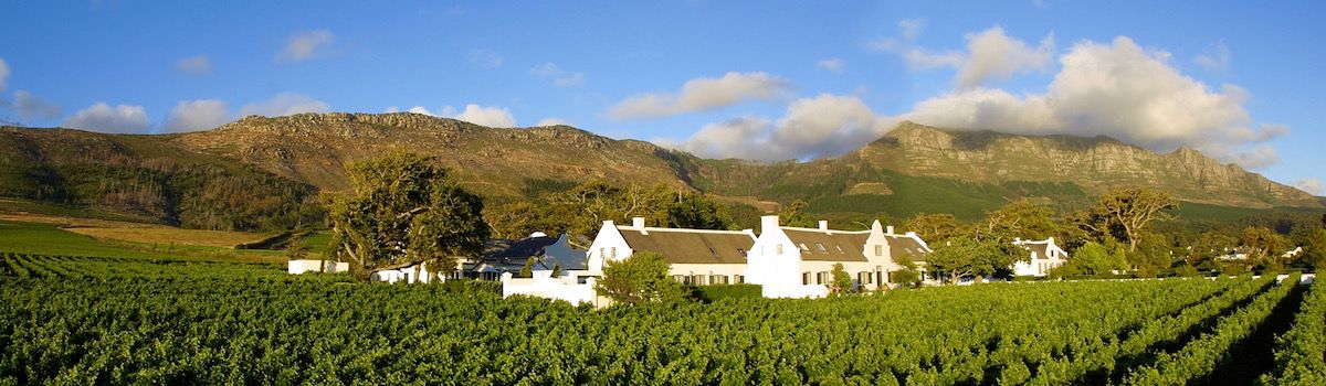 Vineyards Cape Town la Baia