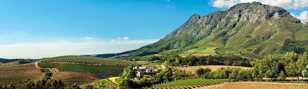 la Baia Camps Bay wine tours
